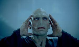 HP Voldemort